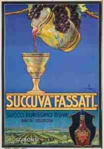 Succuva-Fassati-copia