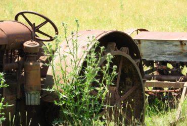 Agricoltore per hobby sì, ma occhio alla salute