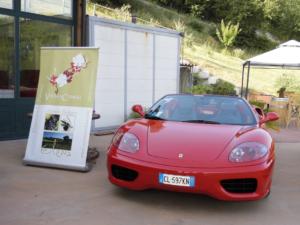 Ferrari a Vigna Cunial