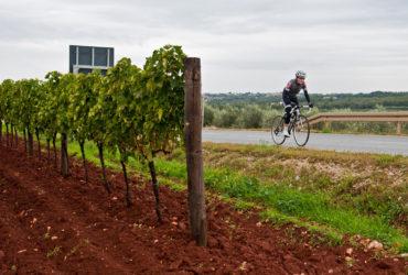C'è un'Istria da bere e una da pedalare