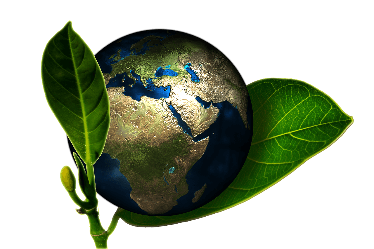 Effetto made in Italy: vino e olio dei paesi tuoi