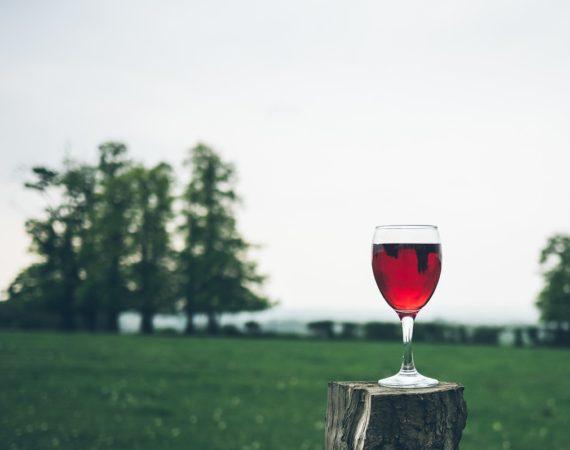Il vino fa male al cuore? I pro e I contro di un bicchiere di vino al giorno.