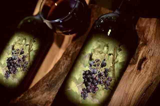 Federvini un secolo di vino più uno